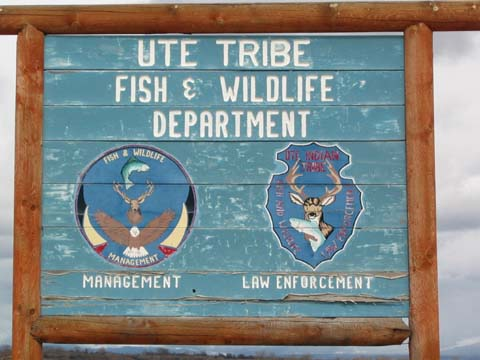 Fish and wildlife for Fish and wildlife permit